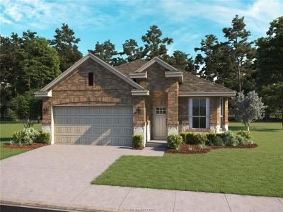 Bryan Single Family Home For Sale: 2161 Mountain Wind Loop