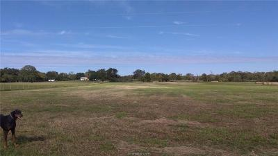 College Station, Bryan, Iola, Caldwell, Navasota, Franklin, Madisonville, North Zulch, Hearne Residential Lots & Land For Sale: 1960 Cr 324