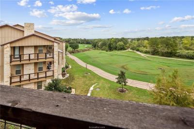 Bryan TX Condo/Townhouse For Sale: $490,000