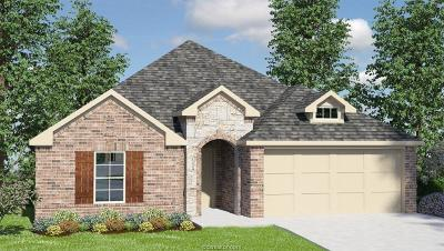 Grimes County Single Family Home For Sale: 7708 Bogie Lane