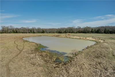 Brazos County Residential Lots & Land For Sale: +/- 31 Acres Tbd Williams Rd. Road