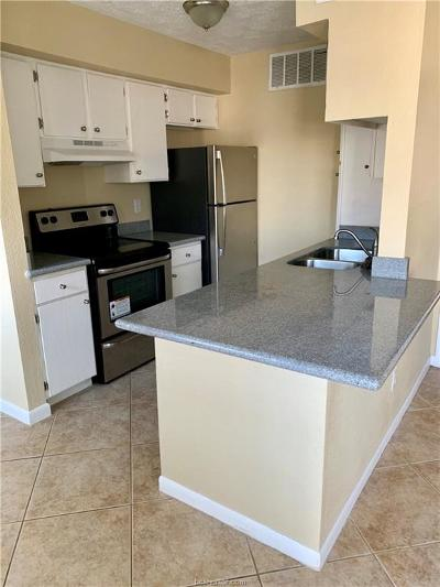 Bryan Rental For Rent: 4441 Old College #1102 Road #1102