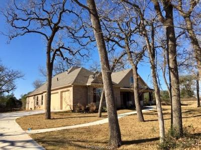 Iola Single Family Home For Sale: 9891 Chelsea Drive