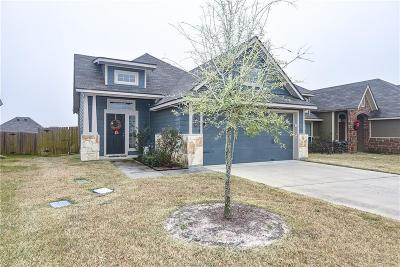 Bryan Single Family Home For Sale: 1046 Venice Drive