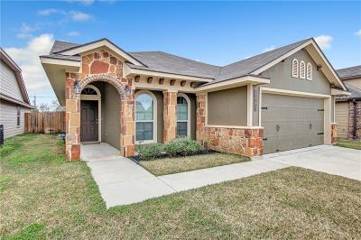Bryan Single Family Home For Sale: 1087 Venice Drive