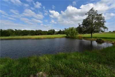 Grimes County Single Family Home For Sale: (+/-17 Ac) 2978 County Road 224