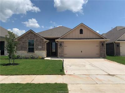 College Station Single Family Home For Sale: 6335 Daytona