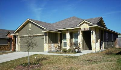 Bryan Single Family Home For Sale: 2004 Shimla Drive