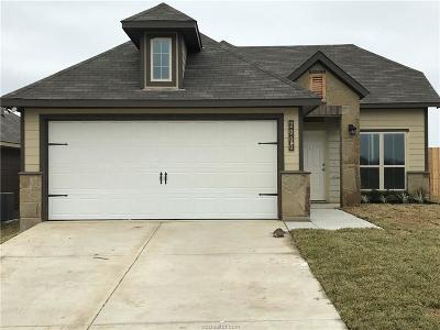 Brazos County Single Family Home For Sale: 2000 Bleeker Cove