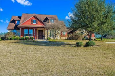 College Station Single Family Home For Sale: 1601 Peach Crossing Drive