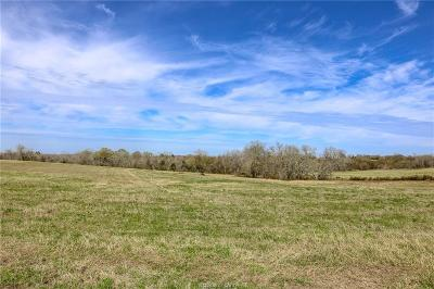 Navasota Residential Lots & Land For Sale: Lot 13 Reagans Way