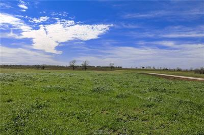 Navasota Residential Lots & Land For Sale: Lot 15 Reagans Way