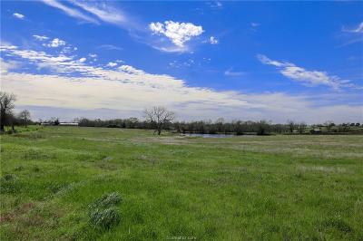 Navasota Residential Lots & Land For Sale: Lot 19 Reagans Way