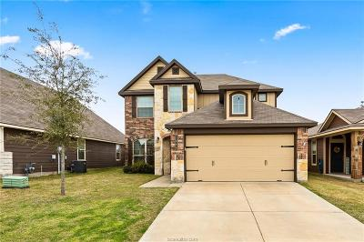 Bryan Single Family Home For Sale: 1060 Venice Drive
