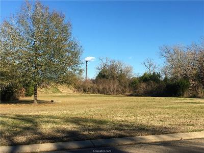 College Station Residential Lots & Land For Sale: 9999 Highway 6 South/Wayfarer Highway