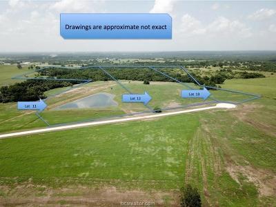Navasota Residential Lots & Land For Sale: Lot 12 Reagans Way