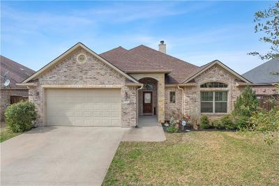 Creek Meadows Single Family Home For Sale: 4010 Sunny Meadow Brook Court