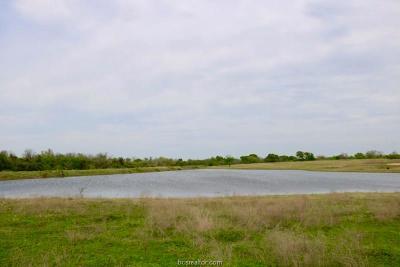 Navasota Residential Lots & Land For Sale: Lot 17 Reagans Way