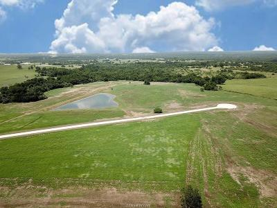 College Station, Bryan, Iola, Caldwell, Navasota, Franklin, Madisonville, North Zulch, Hearne Residential Lots & Land For Sale: Lot 11 Reagans Way