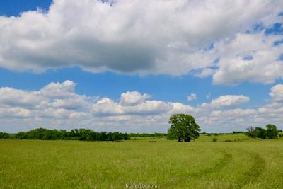 College Station, Bryan, Iola, Caldwell, Navasota, Franklin, Madisonville, North Zulch, Hearne Residential Lots & Land For Sale: Lot 8 Reagans Way