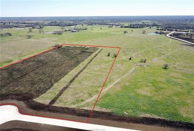 College Station, Bryan, Iola, Caldwell, Navasota, Franklin, Madisonville, North Zulch, Hearne Residential Lots & Land For Sale: Lot 14 Reagans Way