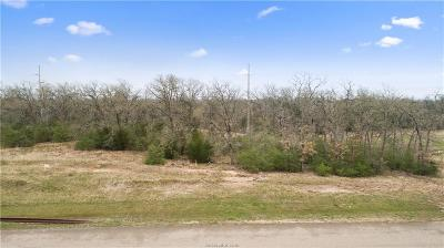 College Station, Bryan, Iola, Caldwell, Navasota, Franklin, Madisonville, North Zulch, Hearne Residential Lots & Land For Sale: 5205 Ruddy Duck Drive