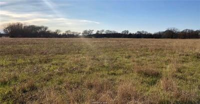 College Station, Bryan, Iola, Caldwell, Navasota, Franklin, Madisonville, North Zulch, Hearne Residential Lots & Land For Sale: 12654 Highway 6