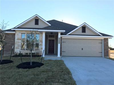 Creek Meadows Single Family Home For Sale: 3859 Still Creek Loop