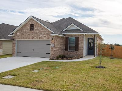 Bryan Single Family Home For Sale: 2163 Mountain Wind Loop