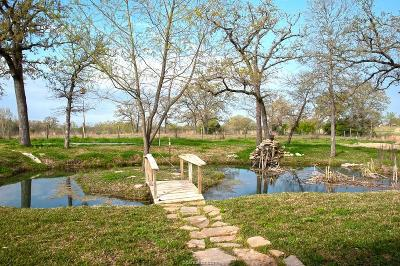 Burleson County Single Family Home For Sale: 1510 Oak Forest Drive