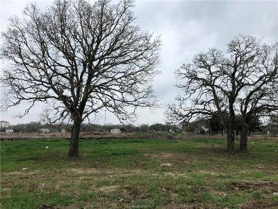 College Station, Bryan, Iola, Caldwell, Navasota, Franklin, Madisonville, North Zulch, Hearne Residential Lots & Land For Sale: 3902 Eskew Drive