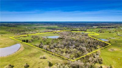 College Station, Bryan, Iola, Caldwell, Navasota, Franklin, Madisonville, North Zulch, Hearne Residential Lots & Land For Sale: 4669 Fm 1452 West