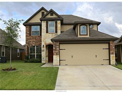 Brazos County Single Family Home For Sale: 1060 Venice Drive