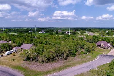 College Station Residential Lots & Land For Sale: 18345 Wigeon Trail Drive