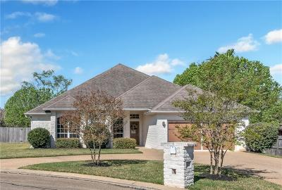 Stone Forest Single Family Home For Sale: 4520 Lapis Court