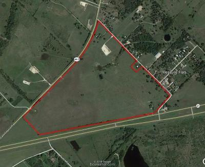 Bryan , College Station  Residential Lots & Land For Sale: 3481 Fazzino Lane