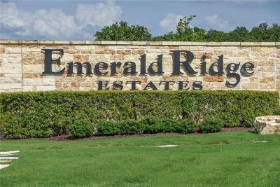 College Station Residential Lots & Land For Sale: 8802 Queens Court