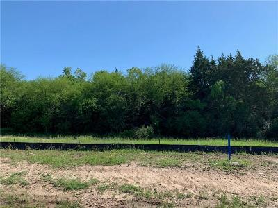 bryan Residential Lots & Land For Sale: 9999 North Harvey Mitchell Parkway