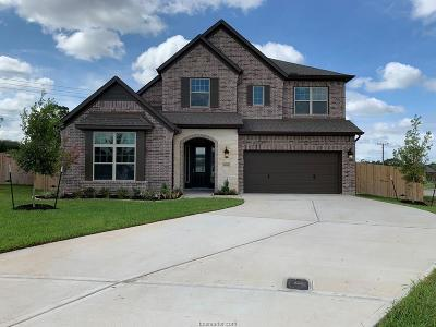 College Station Single Family Home For Sale: 4418 Egremont Place