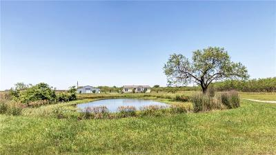 Bryan Single Family Home For Sale: 8204 Bickham Cemetery Road