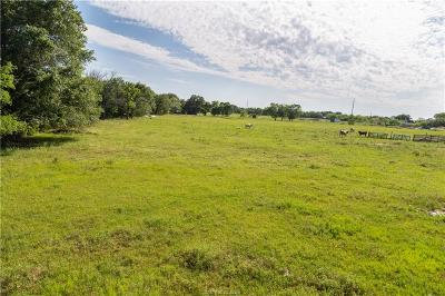 College Station, Bryan, Iola, Caldwell, Navasota, Franklin, Madisonville, North Zulch, Hearne Residential Lots & Land For Sale: 3019 Sandy Point Road