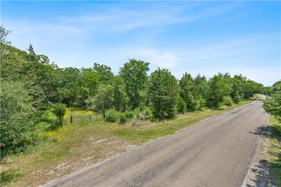 College Station, Bryan, Iola, Caldwell, Navasota, Franklin, Madisonville, North Zulch, Hearne Residential Lots & Land For Sale: 12195 Hopes Creek Road