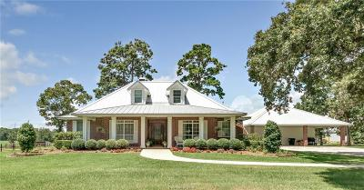 Single Family Home For Sale: 46567 McGill Road