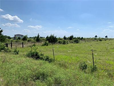 Navasota Residential Lots & Land For Sale: 5300 Cr342 County Road