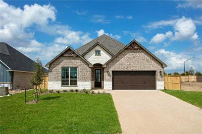 Bryan Single Family Home For Sale: 4223 Harding Way