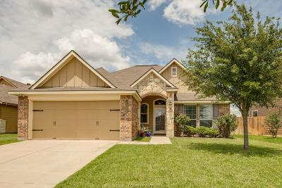 Bryan Single Family Home For Sale: 1019 Venice Drive