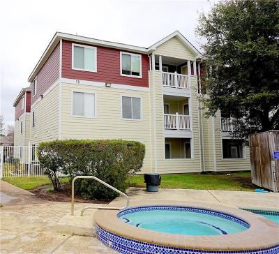 College Station Condo/Townhouse For Sale: 521 Southwest #204