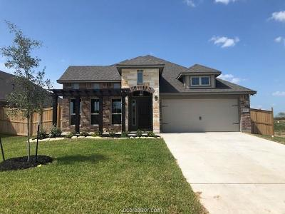 Bryan Single Family Home For Sale: 5131 Maroon Creek Drive