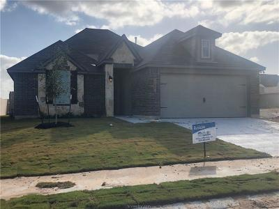 College Station Single Family Home For Sale: 6314 Daytona Drive
