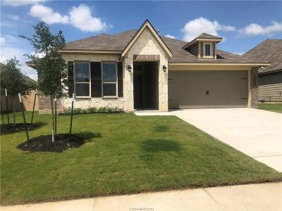 College Station Single Family Home For Sale: 6316 Daytona Drive